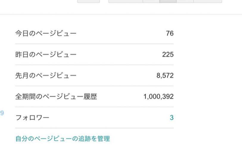 ブログ100万ビュー達成!
