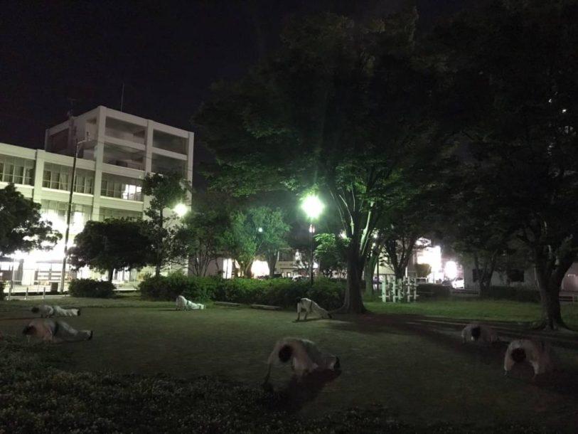 浜松西伊場道場 5/23土曜日